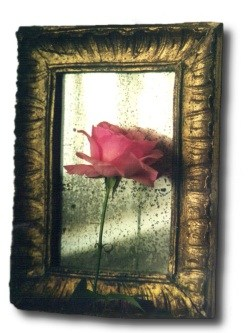 rose & old mirror